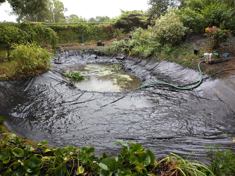 Pond Cleaning Norwich