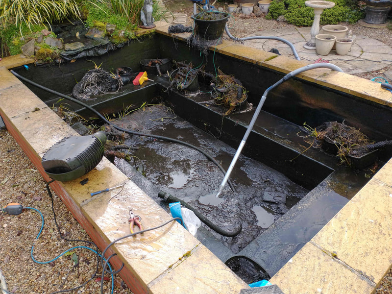 Pond Cleaning Norfolk